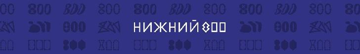 НИЖНИЙ 800